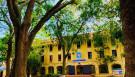 Học sinh Hà Nội không hề lo sợ dù ngồi giữa sân trường đầy cây cổ thụ